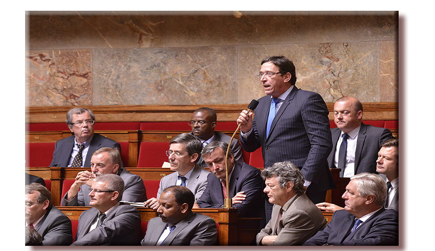 800 560 Philippe Gomes Assemblee nationale